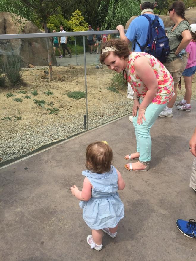 zoo and Lu